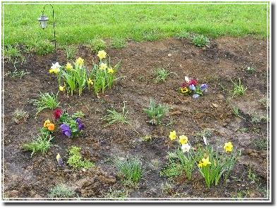 Pflanzbeet im April